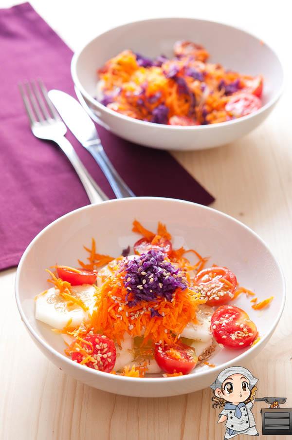 ensalada_zanahorias_tomates_pepinos_lombarda_1