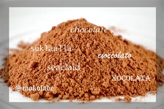 xocolata_p