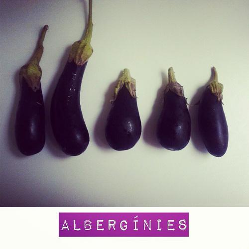 alberginies