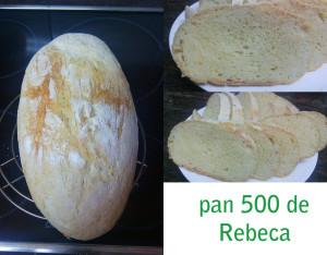 pan500_rebeca