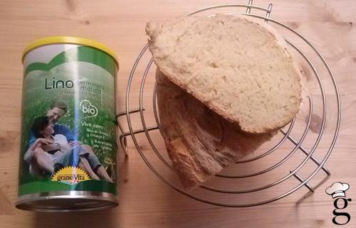 pan_500_sg_lino_molido_panera_glutoniana2