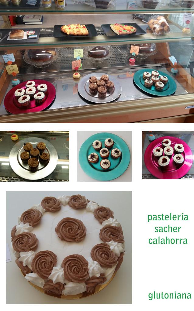 pasteleria_sacher_postres_glutoniana1