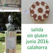salida_calahorra_glutoniana