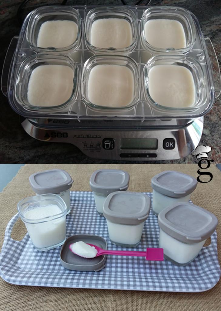 yogures_naturales_multidelices_glutoniana2