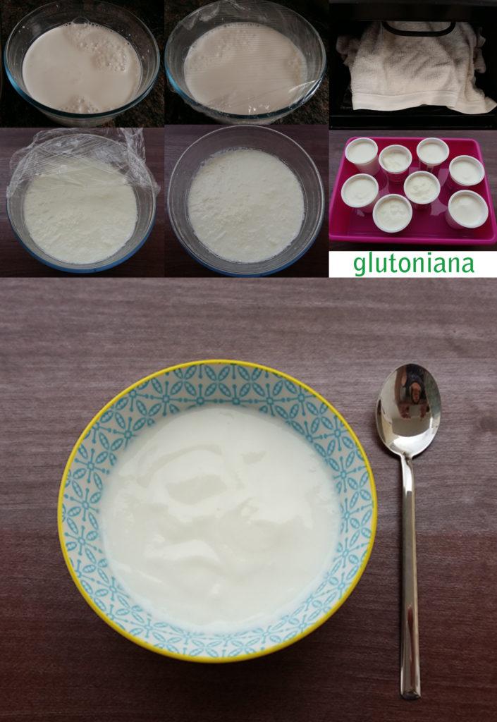 yogures_caseros_sinyogurtera_glutoniana2
