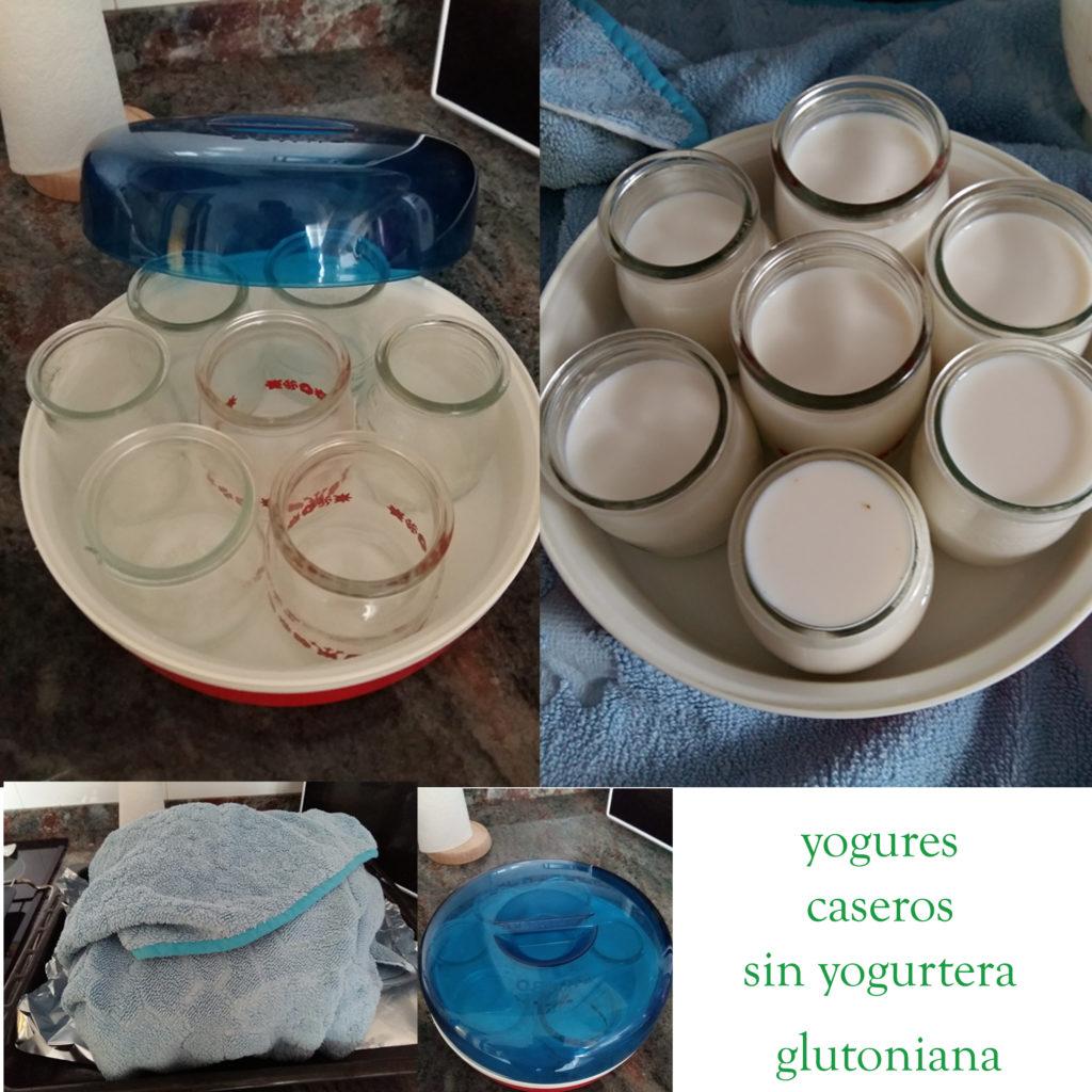 En casa de mi madre había una yogurtera muy vieja. Le corté el cable y aproveché los potecitos y el recipiente de la yogurtera, así cuando vaya allí tendré para hacerme los yogurts en el horno. Y de paso le doy un segundo uso a algo viejo que se iba a tirar :)